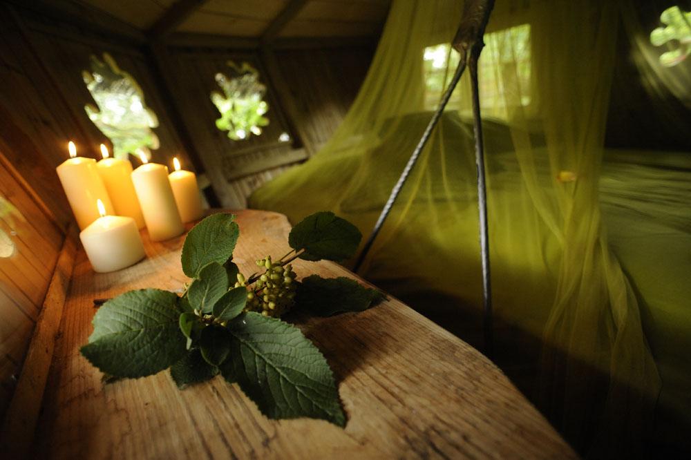 Cabane nid cabanes dans les arbres dans le perche for Acheter cabane dans les arbres